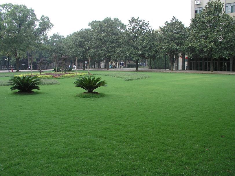 这才是湖南农业大学图片