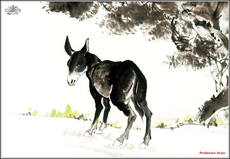国画动物世界---喜欢国画的朋友请进哦