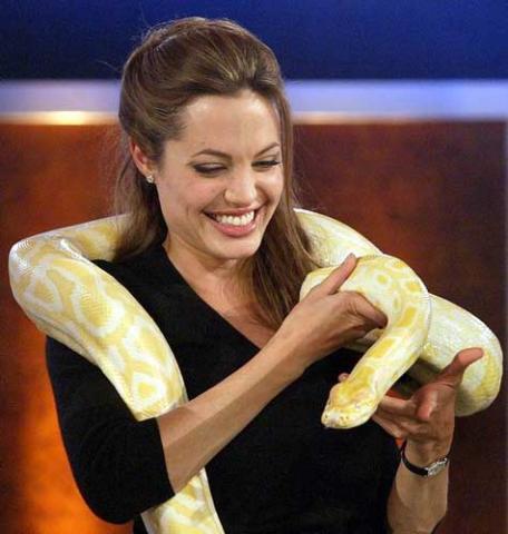 泰国美女与蟒蛇大跳贴身舞