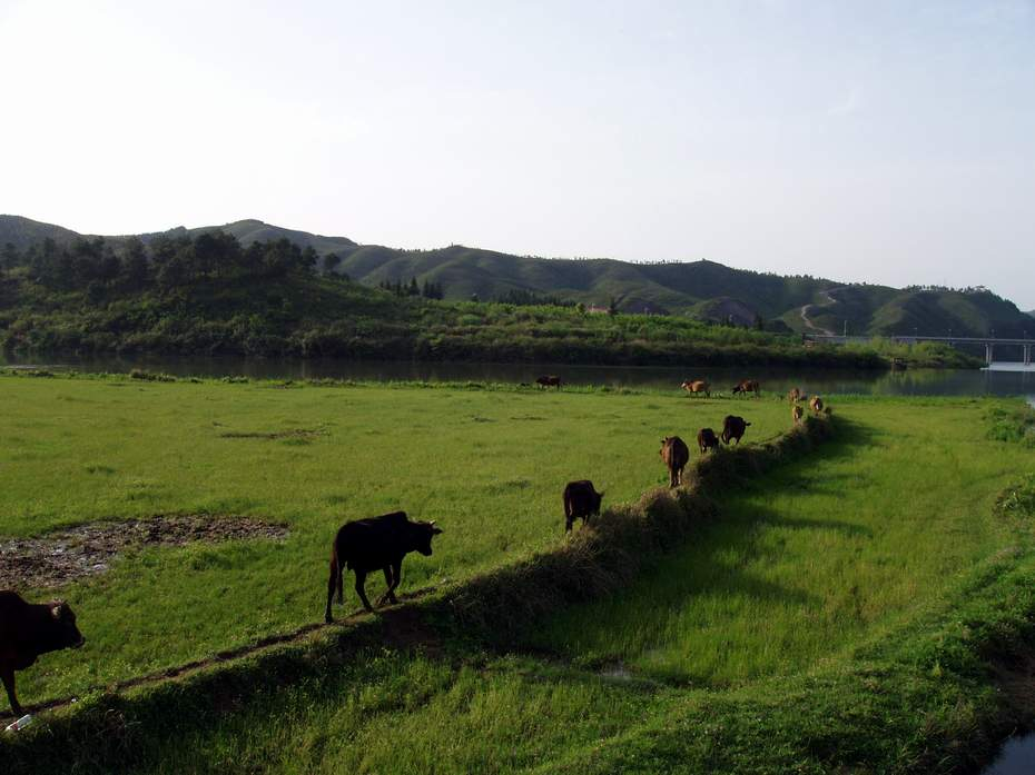原创走在乡间的小路上游记 影像图片