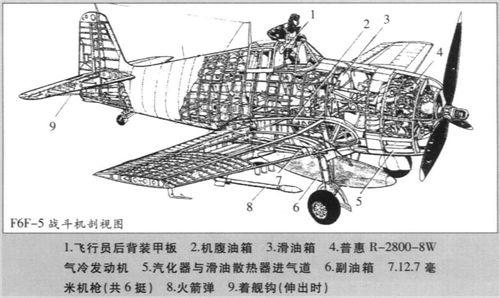 F6F-5结构图