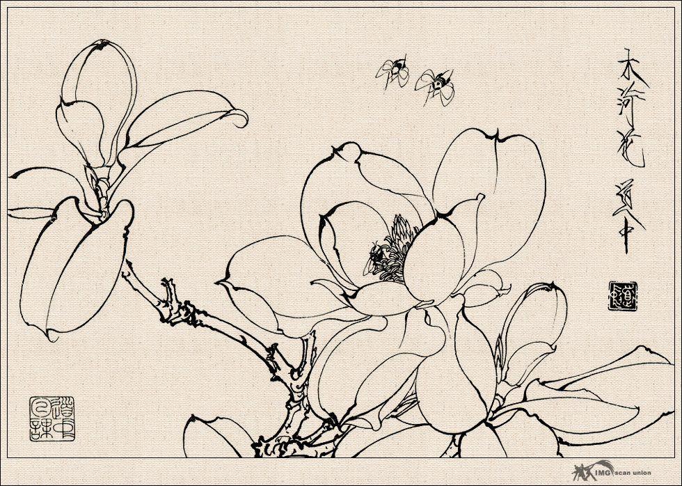 王道中白描花卉草虫